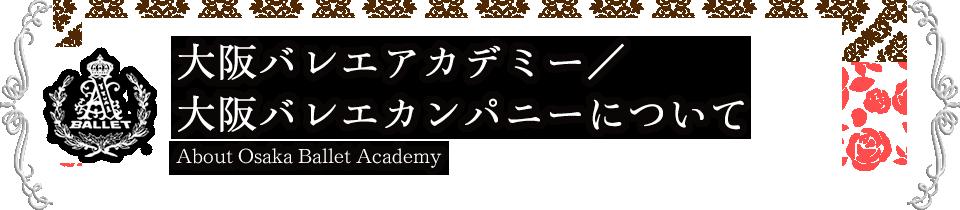 大阪バレエアカデミー/大阪バレエカンパニーについて